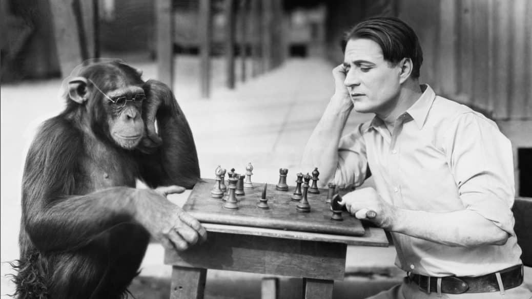 Chimp and Man Play Chess